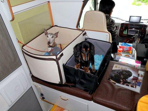 キャンピングカーデイブレイクの犬用シート