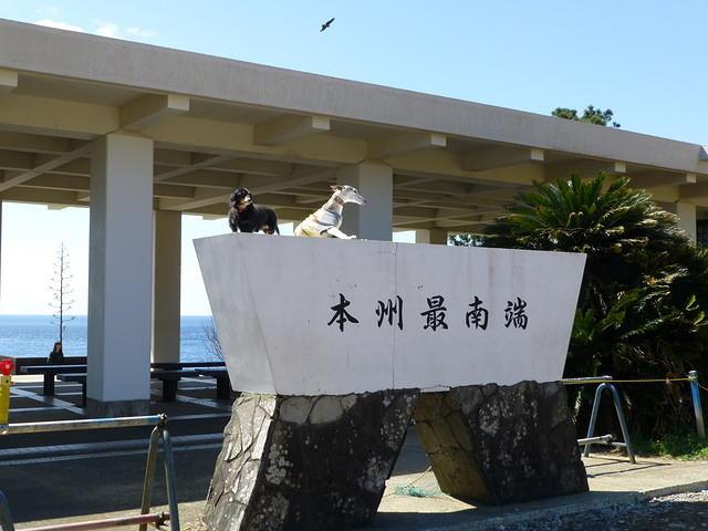 本州最南端 潮岬 ダックスフント ウィペット