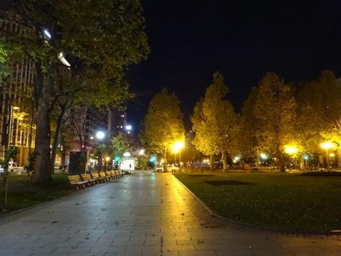 夜の大通り公園 札幌