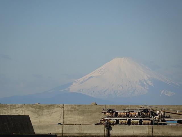 内房保田ばんやから見た富士山
