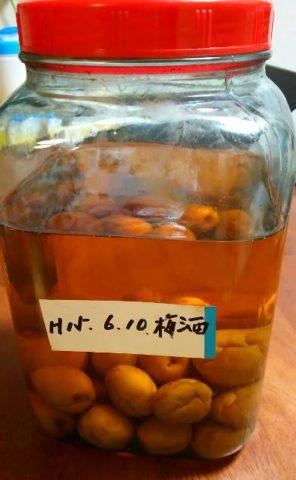 押し入れで発見した12年前の梅酒 美味い