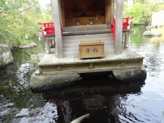 八扇の湯の神社の賽銭箱は遠い