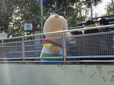 東武動物公園カバ舎の前で撮影しているカバくん