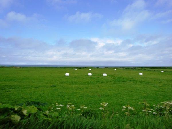 北海道道道106号稚内天塩線キャンピングカー車内から撮影した風景