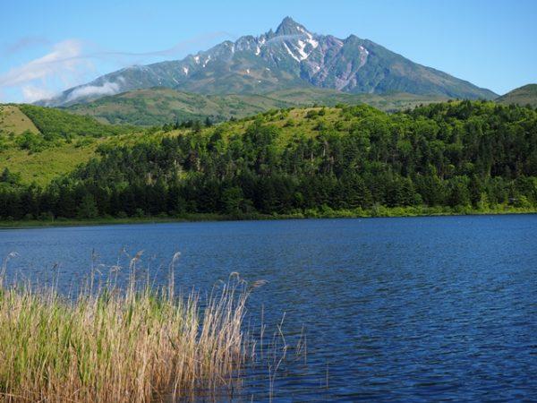 オタトマリ沼と利尻富士の画像