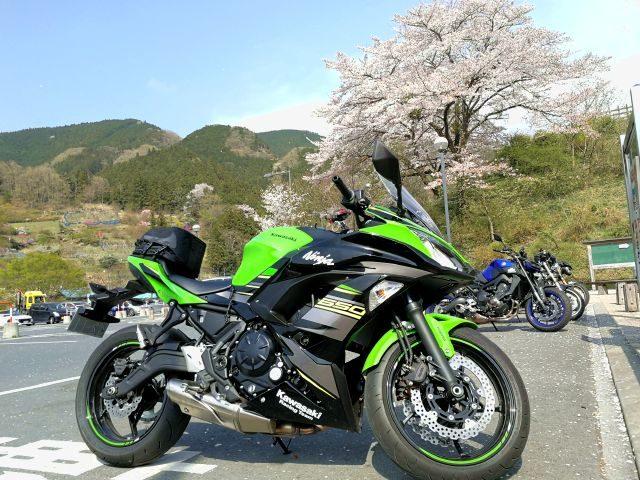カワサキNINJA650と桜。埼玉県横瀬町道の駅あしがくぼ