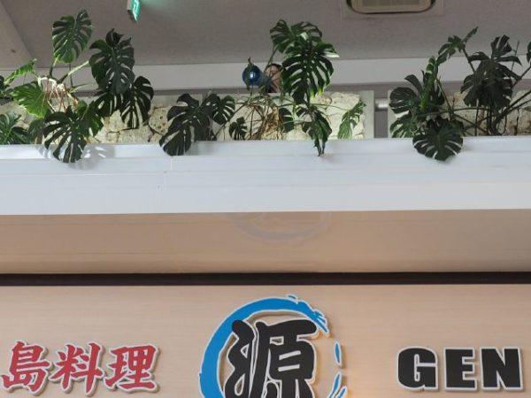 石垣島空港の1階ロビーの搭乗案内放送の様子
