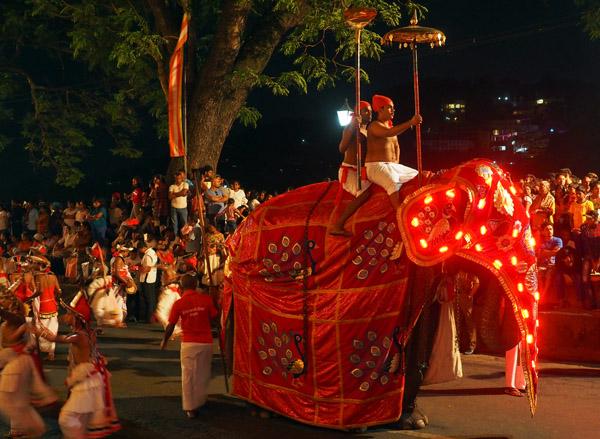 スリランカ、キャンデイのペラヘラ祭、電飾の象
