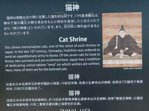 仙厳園猫神の由来を記した看板