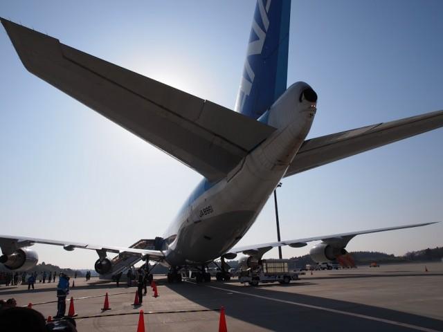 B747-400の尾翼部分、ANAさよならフライトチャーターで撮影