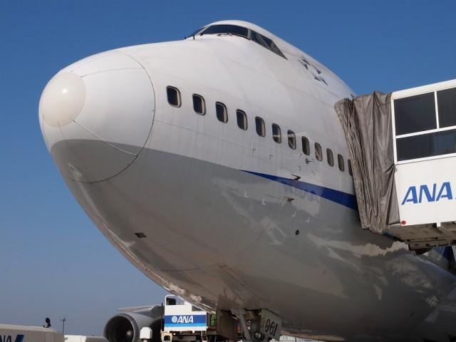 全日空ボーイング747退役記念さよならフライトチャーター成田空港でB747-400の撮影会、機首部分タラップがつけられている